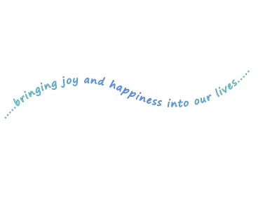 bringing-joy-and-happiness-into-our-lives-air.jpg